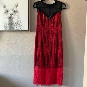NWT DVD Beaded & Lace Midi Dress
